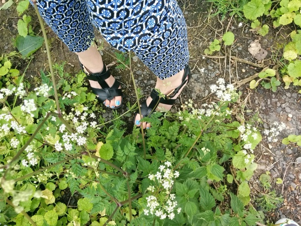 Patterned trousers 3